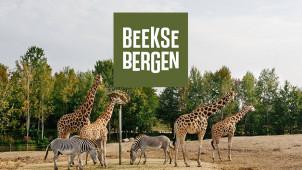 Bespaar 15% Vroegboekkorting op Zomervakanties bij Beekse Bergen