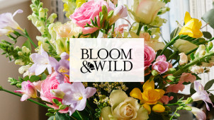 Free Next Day Delivery on Orders at Bloom & Wild
