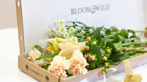 20% Off Letterbox Flowers at Bloom & Wild
