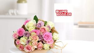 Bis zu 10% Rabatt auf Top-Seller bei Blume2000