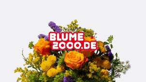 15% Rabatt für dein Newsletteranmeldung bei Blume2000.de