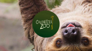 Mother's Day Packages from £9.95 pp at Colchester Zoo