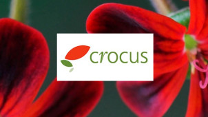 20% Off First Plant Orders at Crocus