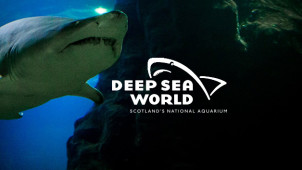 Up to 20% Off Advance Bookings at Deep Sea World