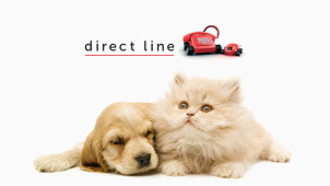 12 months for 9 online at Direct Line Pet Insurance