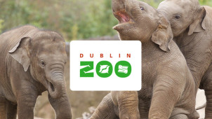 Adult Tickets from €17.50 at Dublin Zoo