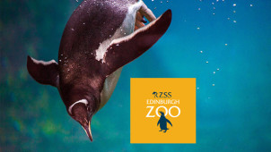 Adult Tickets from £18.50 at Edinburgh Zoo