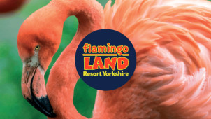 Up to 15% Off Online Bookings this Bank Holiday at Flamingo Land