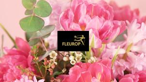 Blumen für jeden Anlass bei Fleurop