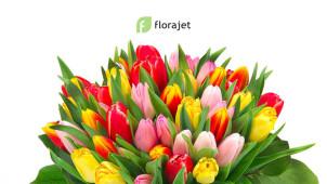 Petits prix chez Florajet