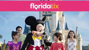 3 Parks for 2 - SeaWorld, Aquatica and Busch Gardens at FloridaTix