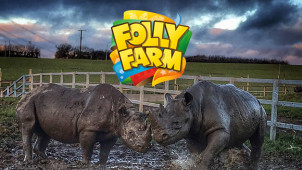 15% Off Online Tickets at Folly Farm Adventure Park & Zoo