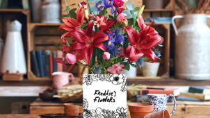 50% Off First Two Boxes at Freddies Flowers
