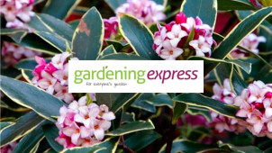 Find £25 Off with Daily Deals + a £5 Gift Card with Orders Over £50 at Gardening Express