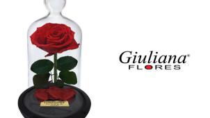 Ganhe 30% OFF em todo o site com o Cupom Giuliana Flores