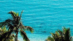 5 Days for the Price of 4 at Hamilton Island
