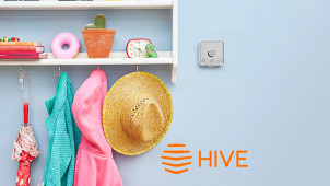 25% Off Hive View Cameras with Annual Subscriptions at Hive Home