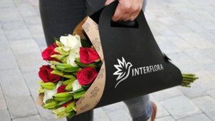 High Quality Flowers Under $65 at Interflora