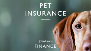 Up to 10% Off for New Customers at John Lewis Pet Insurance