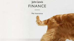 Save up to 10% on Orders When Purchasing Online at John Lewis Pet Insurance