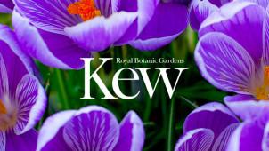 10% Off Orders with Membership Sign-Ups at Kew Royal Botanical Gardens