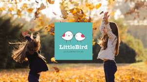 Up to 50% Off Attractions at LittleBird