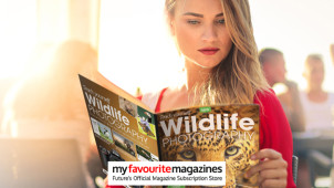 Savings of up to 38% on Magazine Subscriptions at My Favourite Magazines