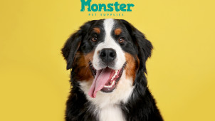 10% Off First Repeat Orders at Monster Pet Supplies