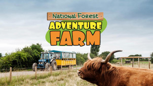 10% Off Entry with Online Bookings at National Forest Adventure Farm