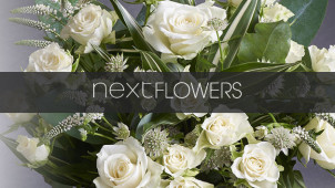 Birthday Flowers from £18 at Next Flowers