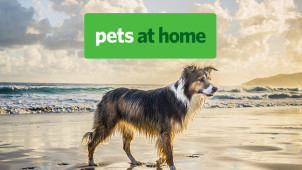Enjoy 40% Off Christmas Pet Parcels at Pets at Home