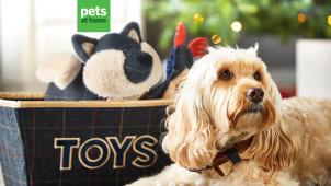 50% Off Selected Top Picks at Pets at Home