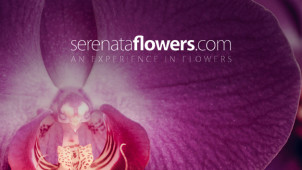 15% Off Orders at Serenata Flowers
