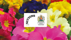 10% Off Orders at Suttons Seeds