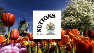 8% Discount When You Shop at Suttons Seeds