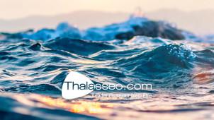 Mois de la Thalasso   Jusqu'à -63% sur vos séjours avec Thalasseo