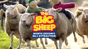 1 Free Child with 2 Paying Adults at The Big Sheep