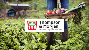 £10 Off Orders Over £80 at Thompson & Morgan