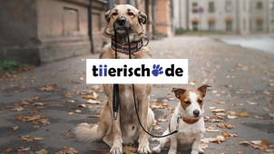 5% Rabatt ab 49€ Bestellwert bei tiierisch.de