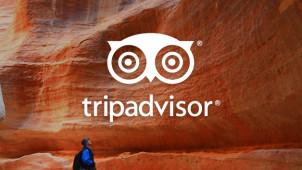£10 Gift Card with Upfront TripAdvisor Hotel Bookings Over £100 at TripAdvisor
