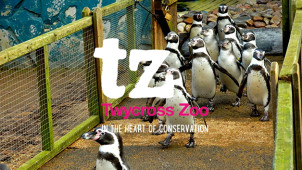Up to 22% Off Tickets at Twycross Zoo