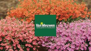 15% Off Orders Over £50 at Van Meuwen