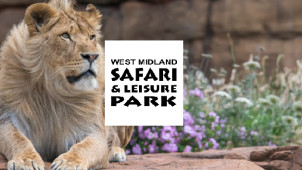 Up to 30% Off Tickets Online at West Midland Safari Park