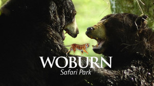 £1 Off Online Tickets at Woburn Safari Park