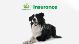Up to 80% Back on Eligible Pet Insurance at Woolworths Pet Insurance