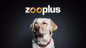 20% Off Harringtons Dry and Wet Dog Food Orders at zooplus Pet Shop