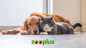 Profiteer van 50% Korting op geselecteerde items in de Outlet bij Zooplus