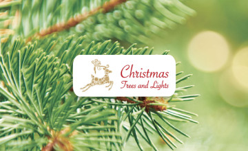 You Can Get 55% Off Selected Battery-Operated Lights at Christmas Trees and Lights