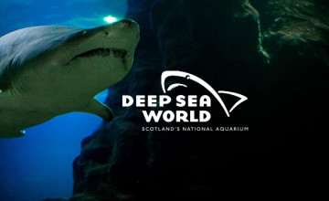Kids Go Free With Full Paying Adult at Deep Sea World
