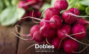 8% Off Orders   Dobies Promo Code